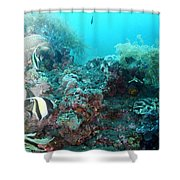 Morish Idols Shower Curtain