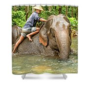 Morning Ablutions 3 Shower Curtain