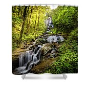 Morning At Amicalola Falls Shower Curtain