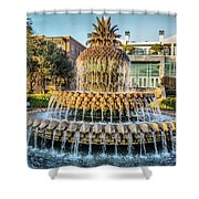 Morning At Pineapple Fountain Shower Curtain