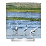Morning At The Refuge Shower Curtain