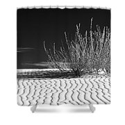 Morning At White Sands  Shower Curtain