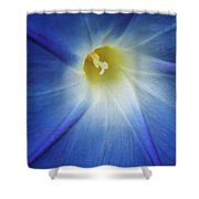 Morning Blue Shower Curtain