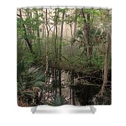 Morning Comes Softly Shower Curtain