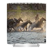 Morning Crossing Shower Curtain