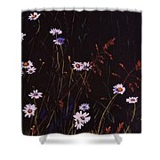 Morning Daisies Shower Curtain