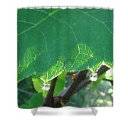 Morning Dew Diamonds Shower Curtain