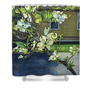Morning Dogwood Shower Curtain