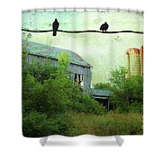 Morning Doves Shower Curtain