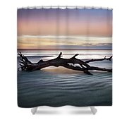 Morning Ecstacy Shower Curtain