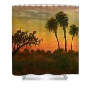 Morning Fog Shower Curtain