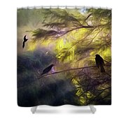 Morning Forest Light Shower Curtain