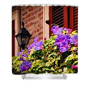 Morning Glories In Nola Shower Curtain