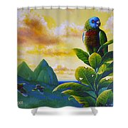 Morning Glory - St. Lucia Parrots Shower Curtain
