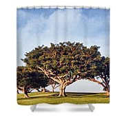 Morning Glory Pntb Shower Curtain