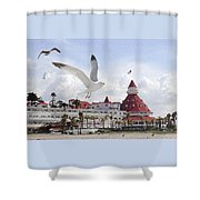 Morning Gulls On Coronado Shower Curtain