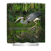 Morning Hunt Shower Curtain