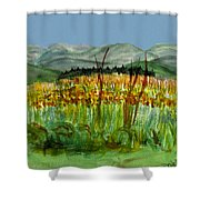 Morning In Backyard At Barton Shower Curtain