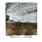 Morning In The Desert Shower Curtain