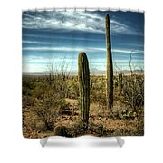Morning In The Sonoran Desert Shower Curtain