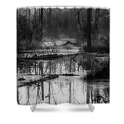 Morning In The Swamp Shower Curtain
