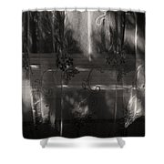 Morning Light And Shadow Shower Curtain