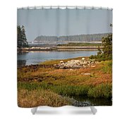 Morning Light At Schoodic  Shower Curtain