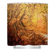 Morning Light Shower Curtain by Okan YILMAZ