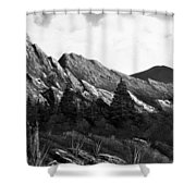 Morning Meadow Dew In Black And White Shower Curtain