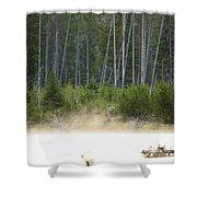 Morning Meditation On The Madison Shower Curtain