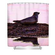 Morning Meeting Shower Curtain