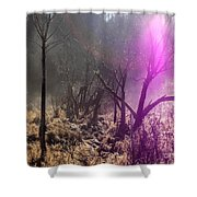 Morning Misty Flare Shower Curtain