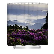 Morning On Grassy Ridge Bald Shower Curtain by Rob Travis