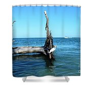 Morning On Longboat Key Shower Curtain