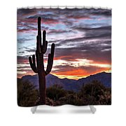 Morning On The Horizon  Shower Curtain