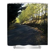 Morning Path Shower Curtain