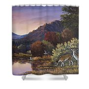 Morning Peace Shower Curtain