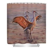 Morning Praise Shower Curtain
