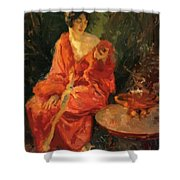 Morning Reflections 1910 Shower Curtain