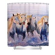 Morning Run Shower Curtain by Jay Johnson
