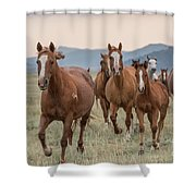 Morning Run Shower Curtain