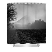 Morning Scene In Olympic National Park Shower Curtain