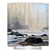 Morning Shore Shower Curtain