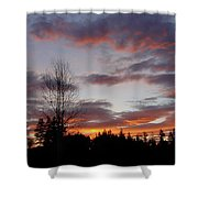 Morning Silhouetted - 1 Shower Curtain