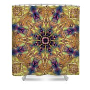 10300 Morning Sky Kaleidoscope 01a Shower Curtain