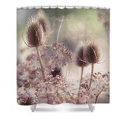 Morning Softness. Wild Grass Shower Curtain