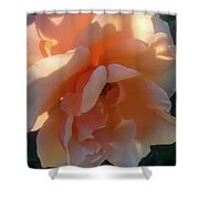 Morning Stroll Shower Curtain
