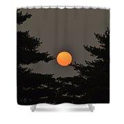 Morning Sun Through Haze Shower Curtain