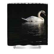 Morning Swan Shower Curtain