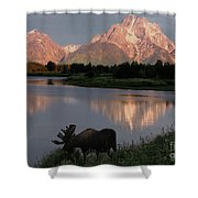 Morning Tranquility Shower Curtain by Sandra Bronstein